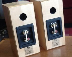 Totem Dreamcatcher speakers back