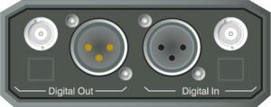 Dolby DM100 rear