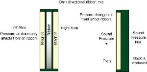 omnidirectional ribbon