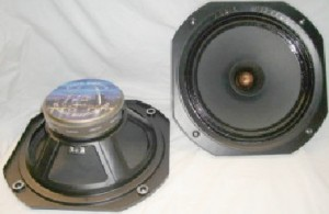 Audio Nirvana Super 12 Driver itselfs