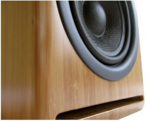 Audioengine P4 Mini-Monitors speaker