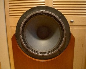 Emerald Physics CS3 Speaker