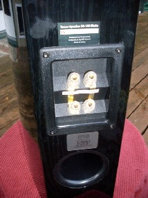 EMP Tek E5Ti Mini-Floorstanding Speakers back