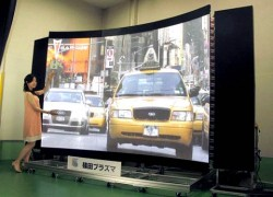 Shinoda Plasma Corporation 145″ Display