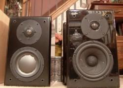 Speaker Comparison: Audio Concepts Sapphire XL vs. Stone Image Audio Rothschilde A2 Part 1